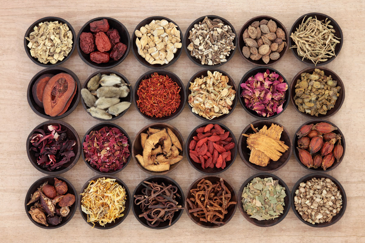 acupuncture u0026 natural health solutions acupuncture in naples fl
